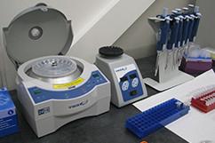 Certigen Lab 8065